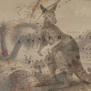 Kanga on Map2